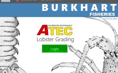 Lobster Grading System